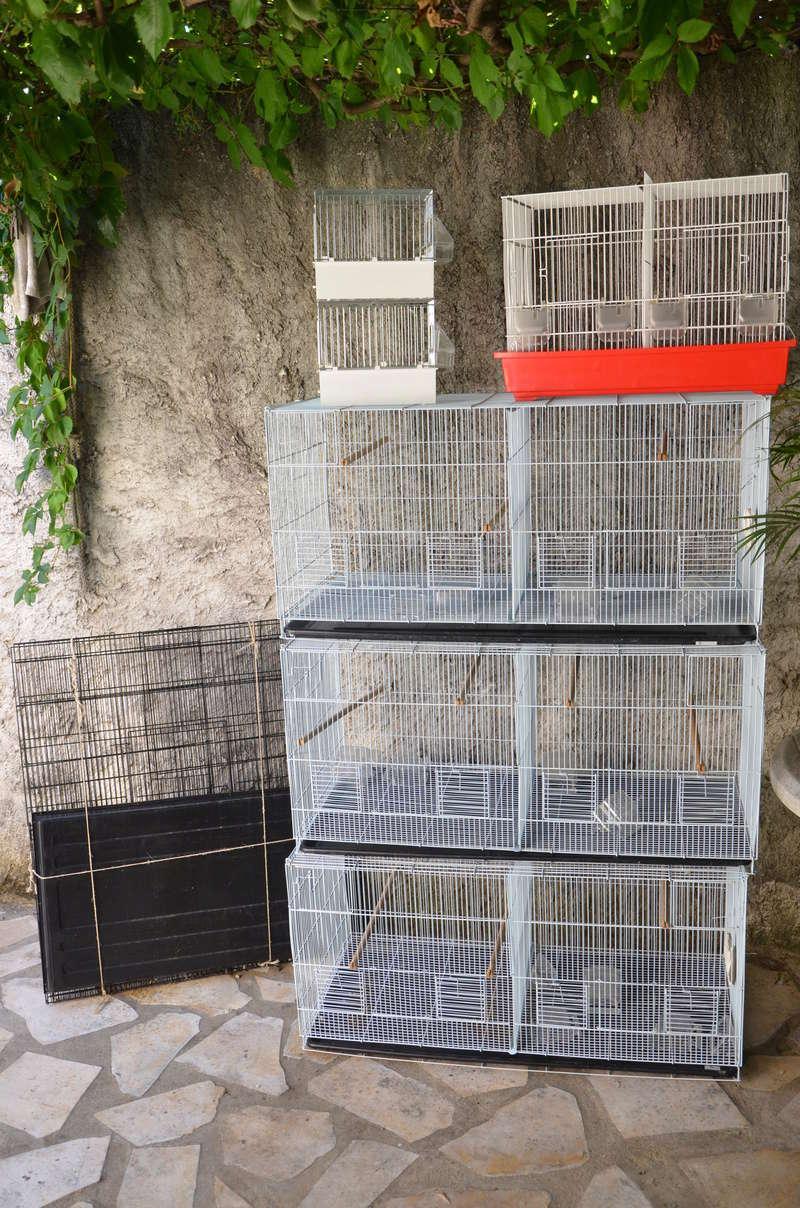 Vente de cages Dsc_2714
