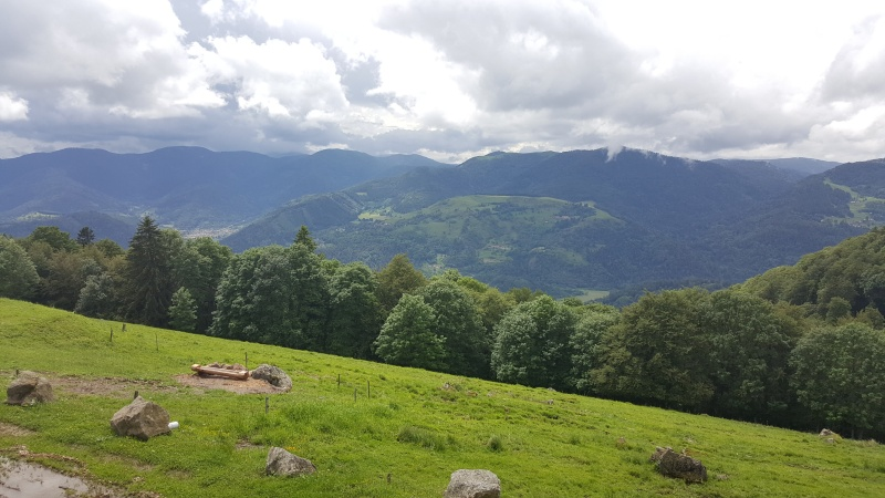 CR Rasso Alsace 2016 20160629