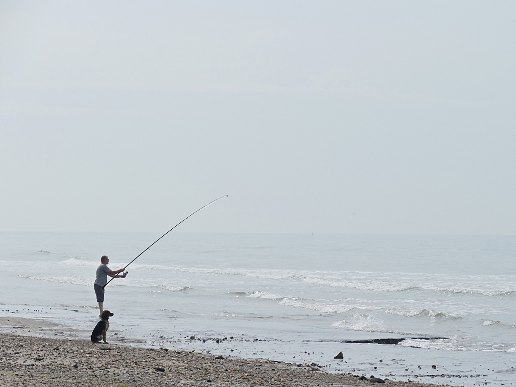 Chien de chasse...& pêche P1060411