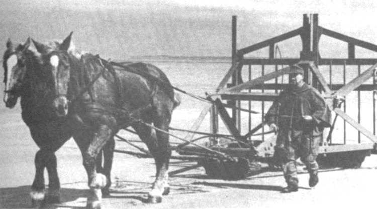 2 - Les obstacles sur la plage d'Omaha à Vierville 111_2210