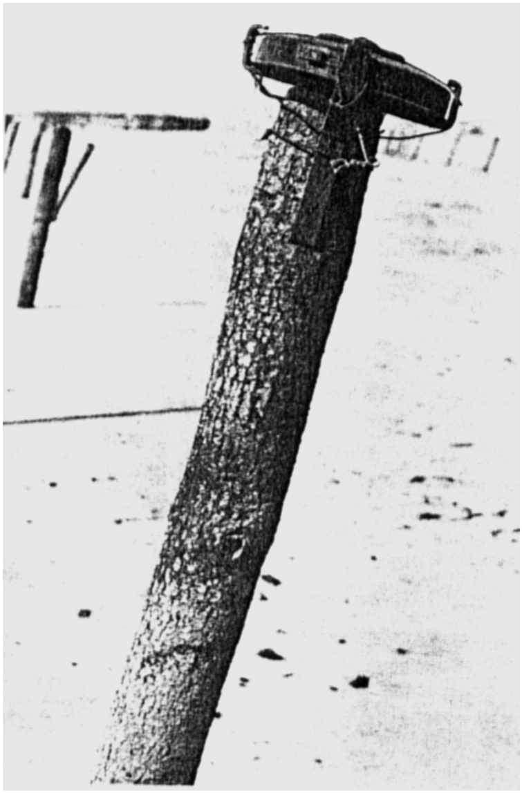 2 - Les obstacles sur la plage d'Omaha à Vierville 111_9210