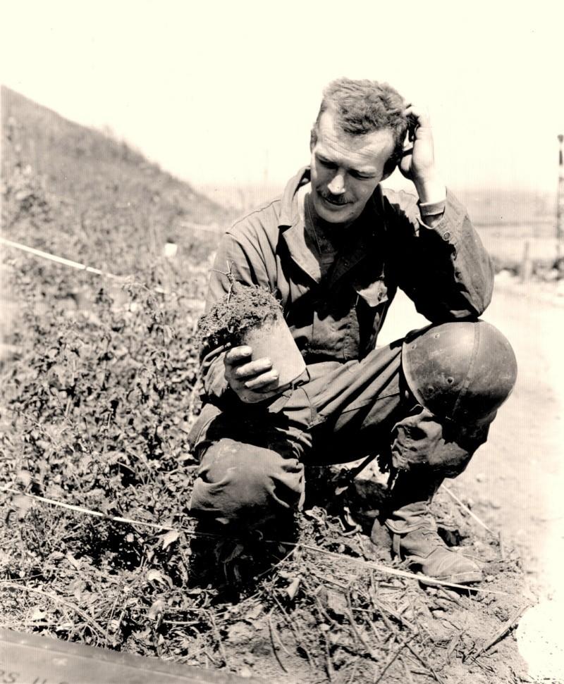 5 - Le déminage (Vierville sur Mer) 1944-m11