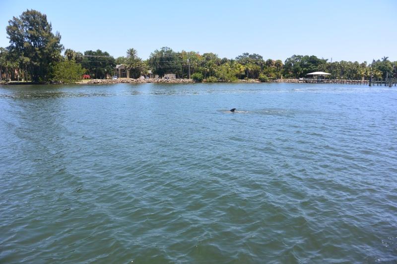 Flo et Géo découvrent la Floride et les Bahamas ! (DCL - USO - WDW) [MAJ le 26/06/16 - TR fini] - Page 11 Dsc_2227