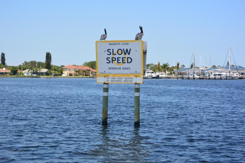 Flo et Géo découvrent la Floride et les Bahamas ! (DCL - USO - WDW) [MAJ le 26/06/16 - TR fini] - Page 11 Dsc_2315
