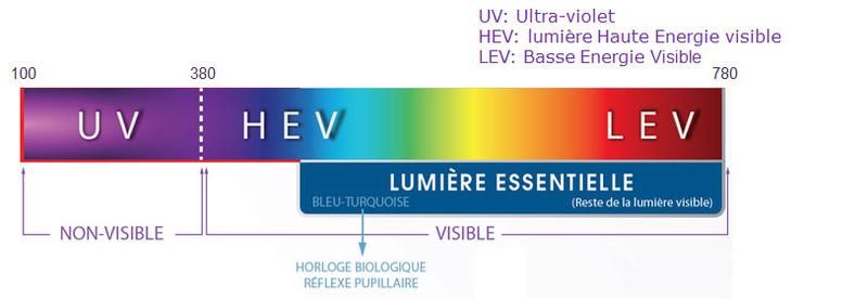 Les lunettes anti lumière bleue Spectr10