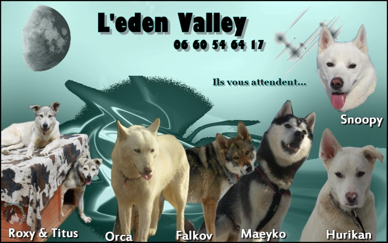 le blog de l'association Eden Valley Crapse10