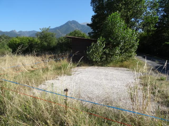 Journal de l'aménagement d'un terrain par une débutante : quelques photos récentes Dsc01136