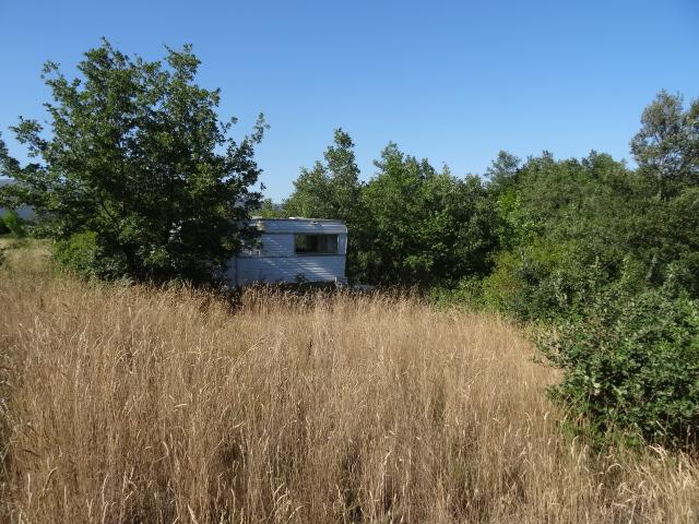 Journal de l'aménagement d'un terrain par une débutante : quelques photos récentes Dsc01167