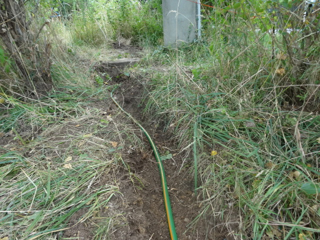 Journal de l'aménagement d'un terrain par une débutante : quelques photos récentes - Page 4 Dsc01236