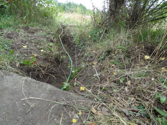 Journal de l'aménagement d'un terrain par une débutante : quelques photos récentes - Page 4 Dsc01238