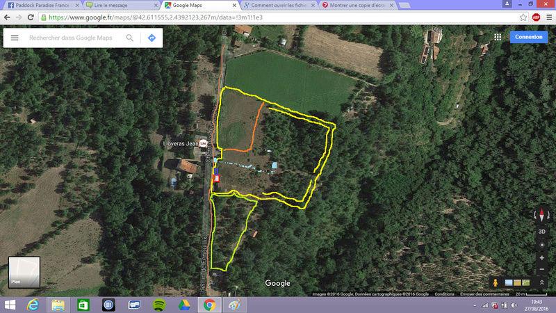 Journal de l'aménagement d'un terrain par une débutante : quelques photos récentes - Page 6 Premie10