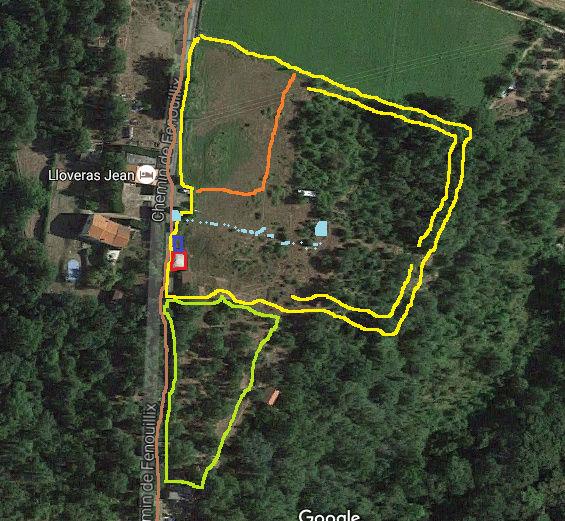 Journal de l'aménagement d'un terrain par une débutante : quelques photos récentes - Page 6 Premie12