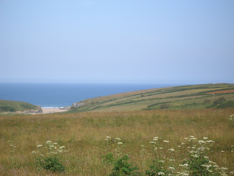 Campsites in Cornwall 08310