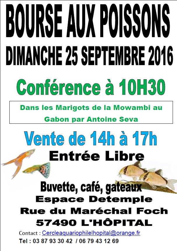 Bourse de L'Hôpital (57) - 25 septembre 2016 Nouvel10