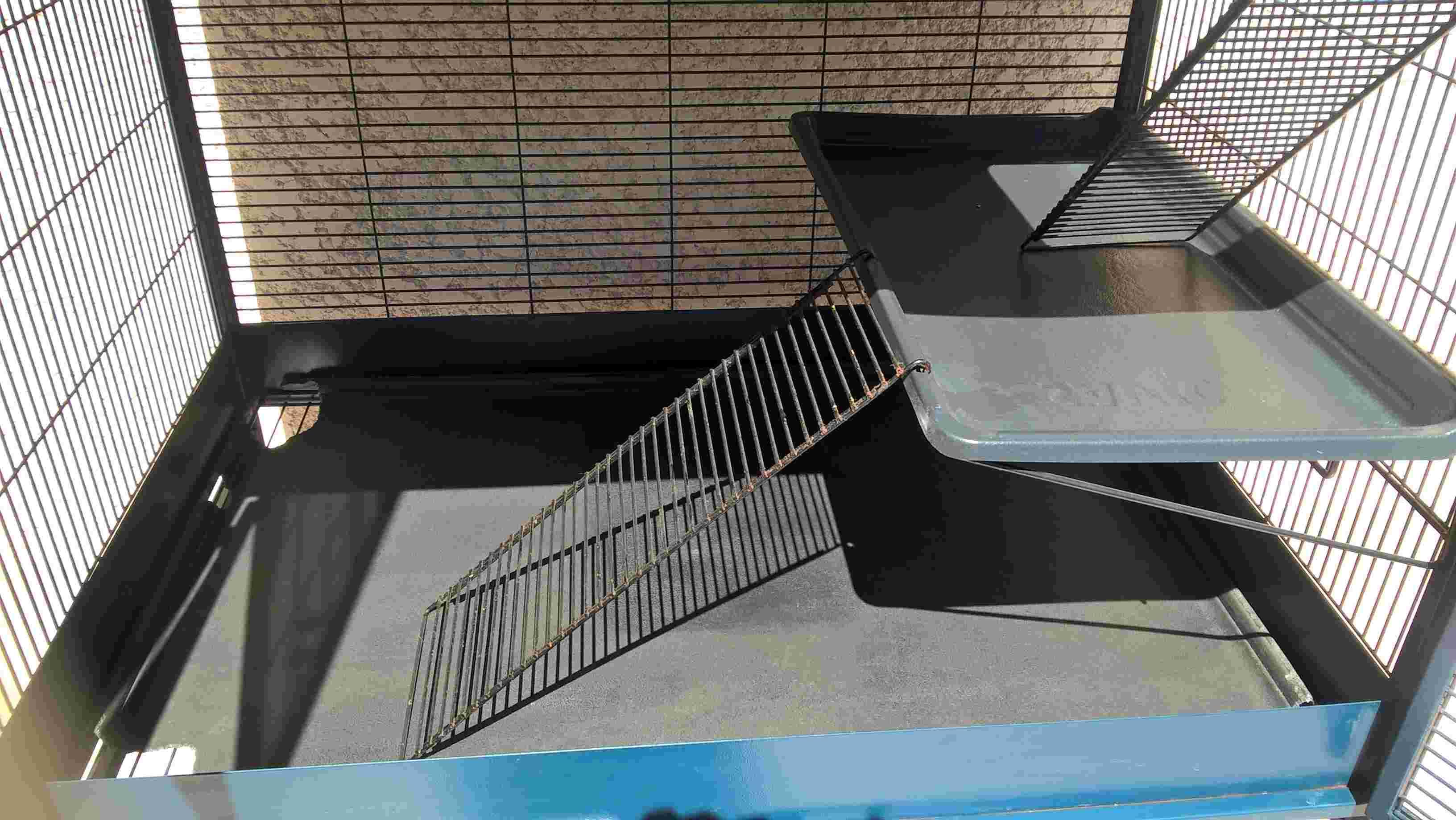 Vends cage Royal Suite 95 Double Savic Wp_20113