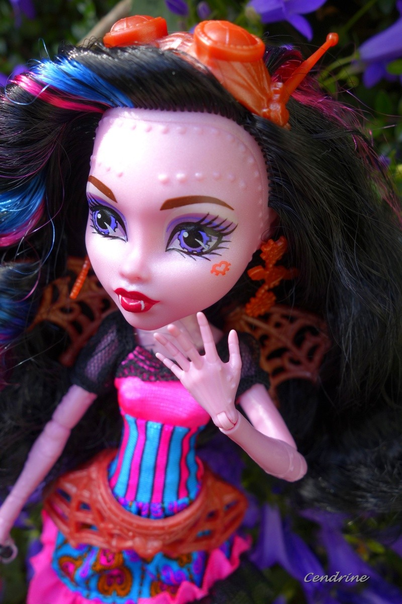 Les Monster High de Cendrine - Page 3 _dsc2013