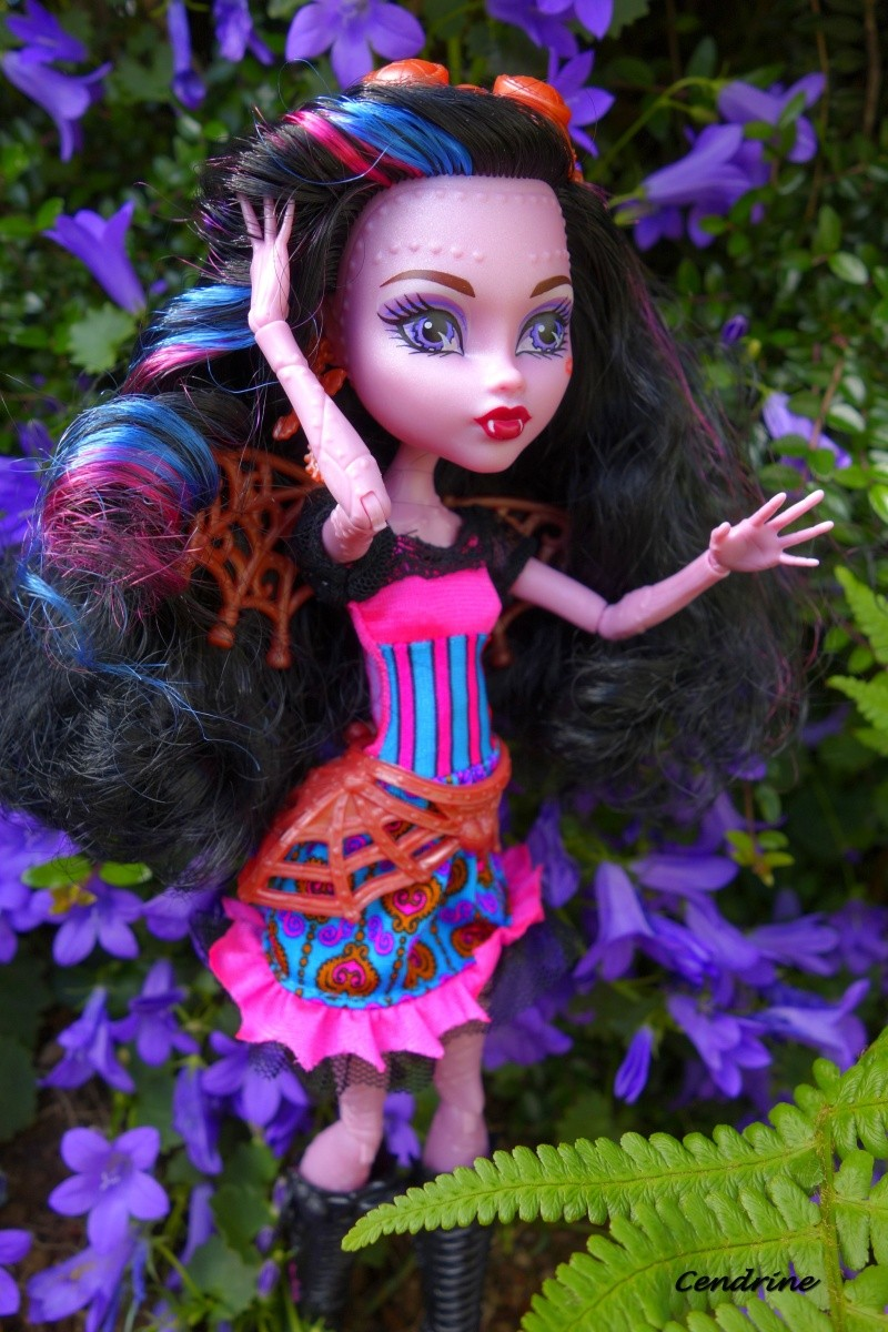Les Monster High de Cendrine - Page 3 _dsc2014