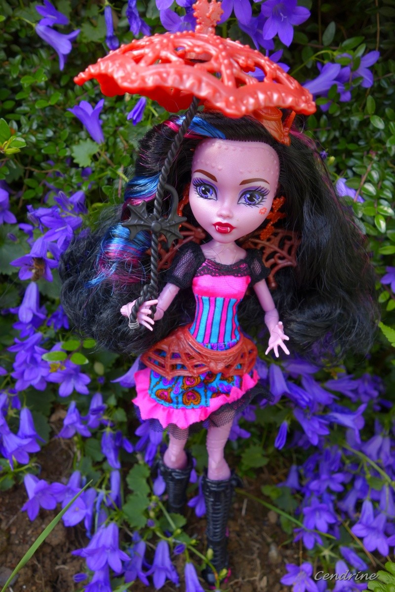 Les Monster High de Cendrine - Page 3 _dsc2015