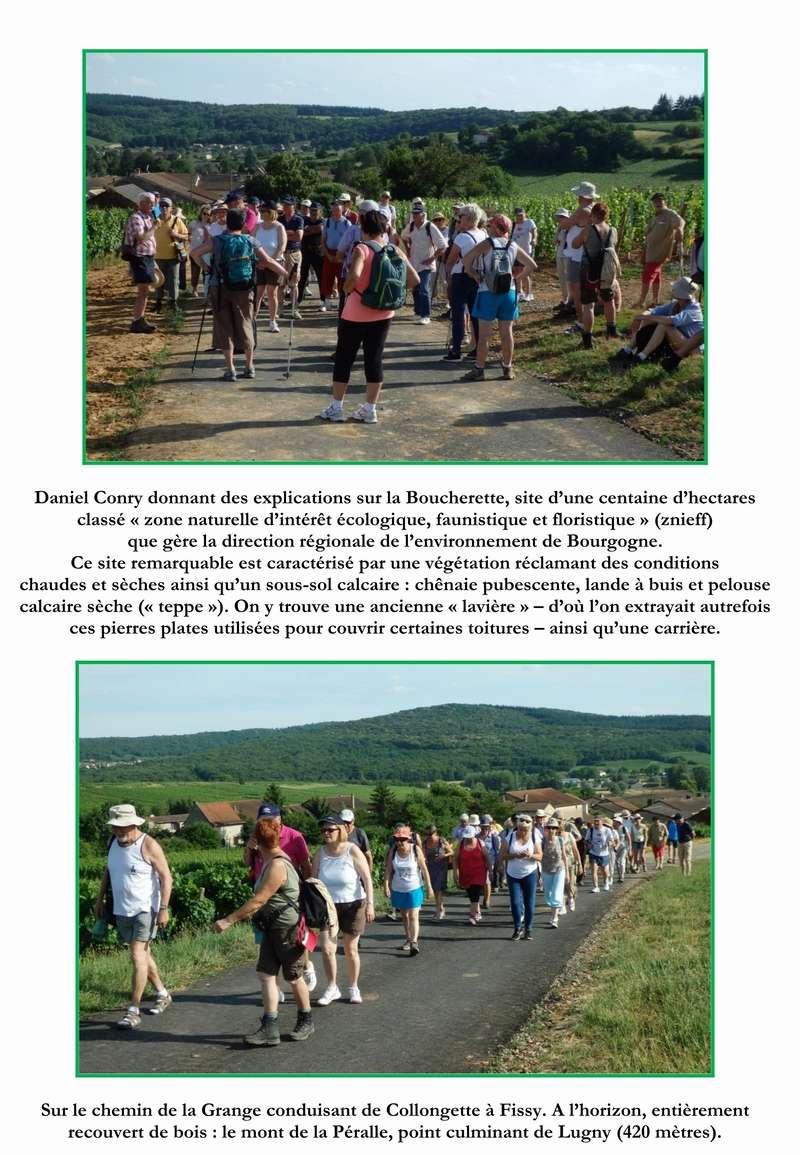 """Lugny (71) : photos de la 4e marche du patrimoine (vendredi 8 juillet 2016) """"Les marcheurs incollables sur le patrimoine"""" (""""Le JSL"""" du mardi 12 juillet 2016) 05_cop10"""
