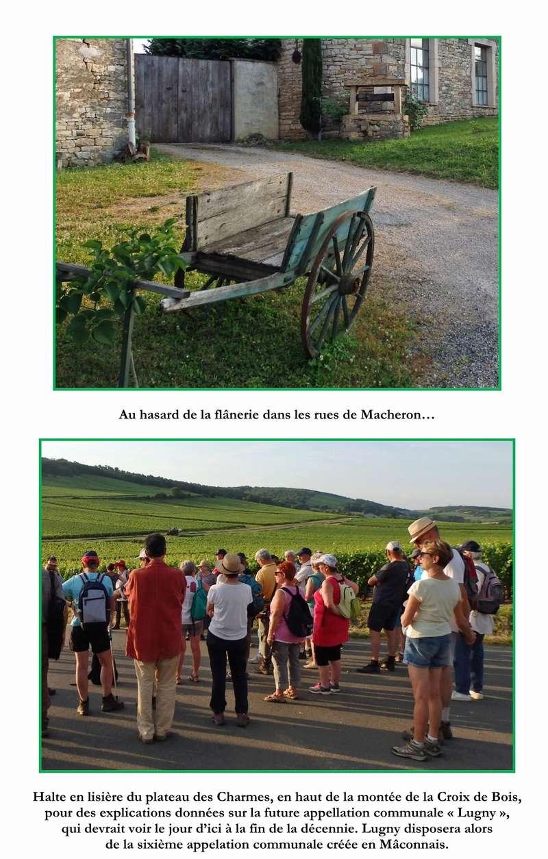 """Lugny (71) : photos de la 4e marche du patrimoine (vendredi 8 juillet 2016) """"Les marcheurs incollables sur le patrimoine"""" (""""Le JSL"""" du mardi 12 juillet 2016) 12_cop10"""