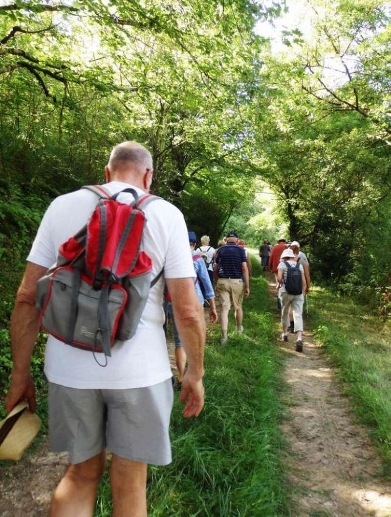 """Lugny (71) : photos de la 4e marche du patrimoine (vendredi 8 juillet 2016) """"Les marcheurs incollables sur le patrimoine"""" (""""Le JSL"""" du mardi 12 juillet 2016) Lugny_24"""