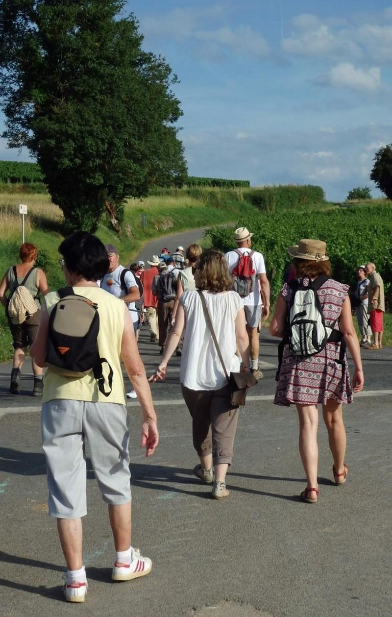 """Lugny (71) : photos de la 4e marche du patrimoine (vendredi 8 juillet 2016) """"Les marcheurs incollables sur le patrimoine"""" (""""Le JSL"""" du mardi 12 juillet 2016) Lugny_28"""