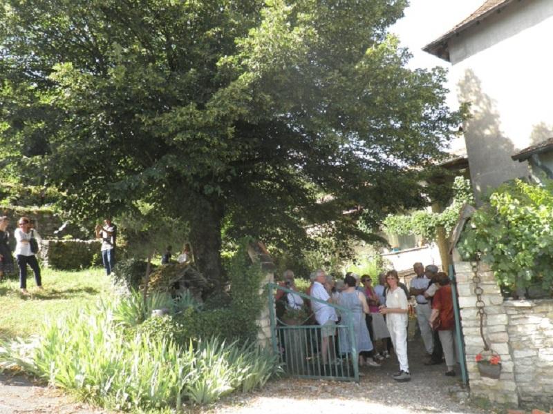 Activités 2012 Vignes11
