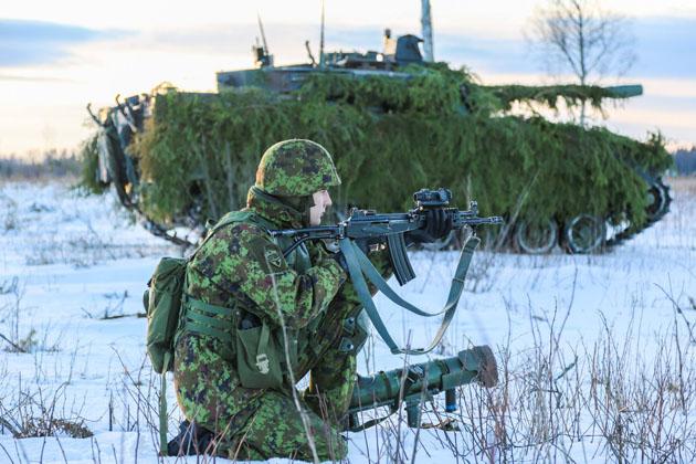 Armée Estonienne/Estonian Army - Page 3 3846
