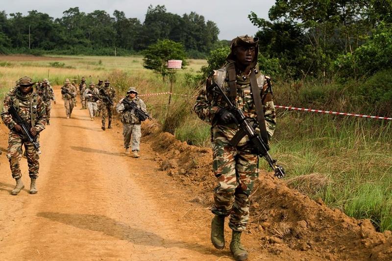 Forces Armées Camerounaises - Page 4 52119