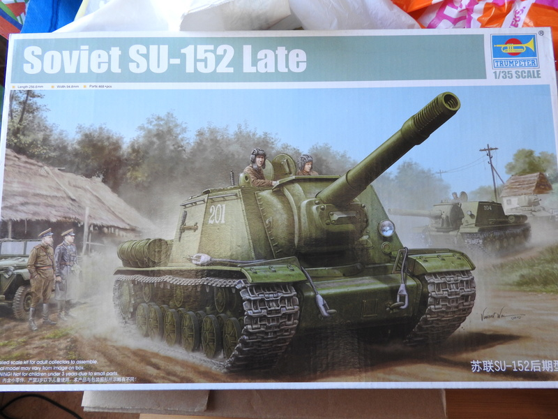 A vendre 1/35 WWII Dscn1610