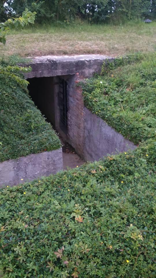 COLLEVILLE-MONTGOMERT 14880 site batterie Hillman 12321310