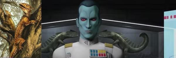 Star Wars Rebels Saison 3 Star-w10