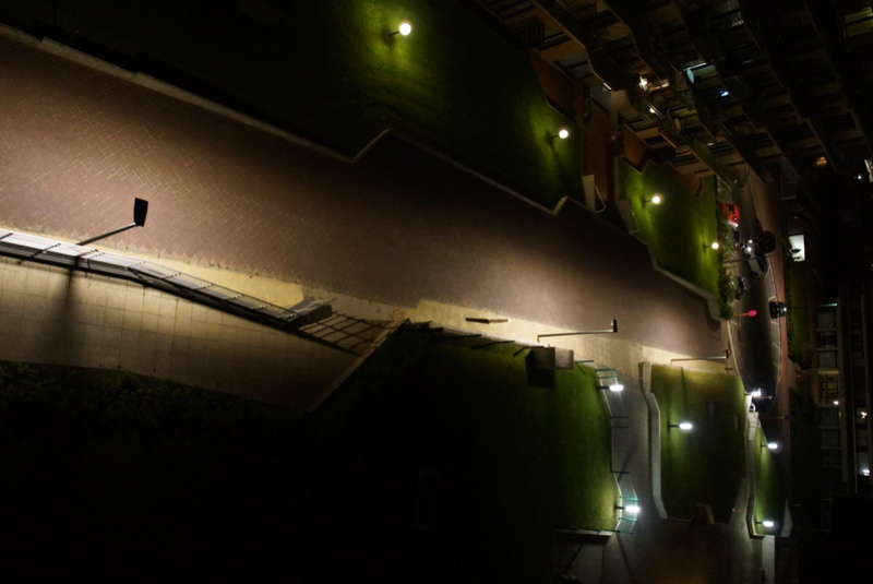 La pollution lumineuse, c'est quoi? Quelles conséquences? (vidéo) Dsc01510