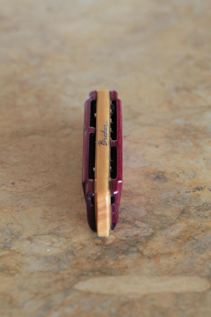 Photos harmonicas Brodur - Page 15 5d3_1011