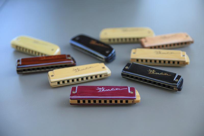 Photos harmonicas Brodur - Page 15 5d3_9910