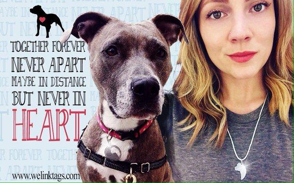 Médaille de vos chiens: avis - achats - Page 9 Welink10