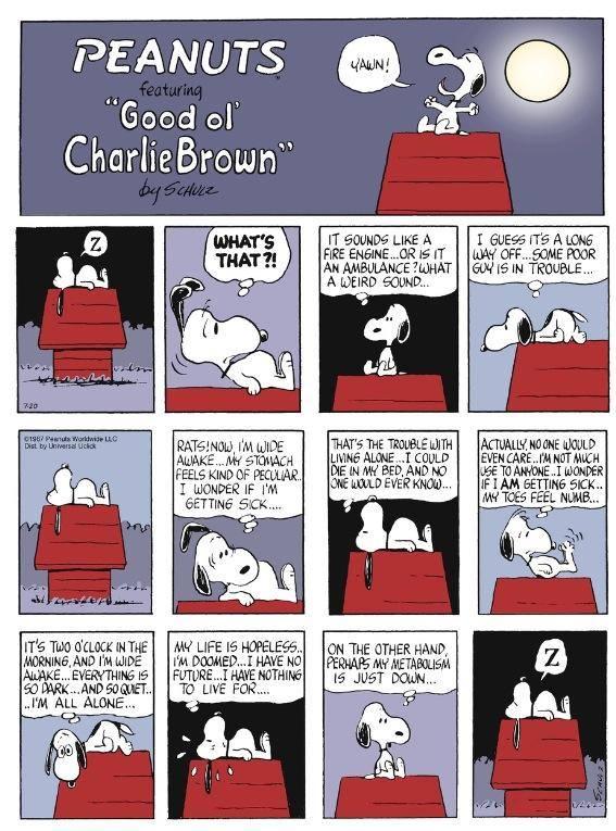 Peanuts. 10376210