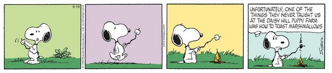 Peanuts. Captu262