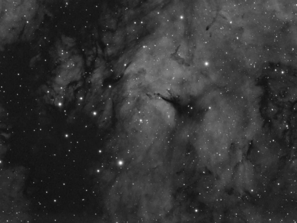 Un petit bout d'IC1318 Ic131811