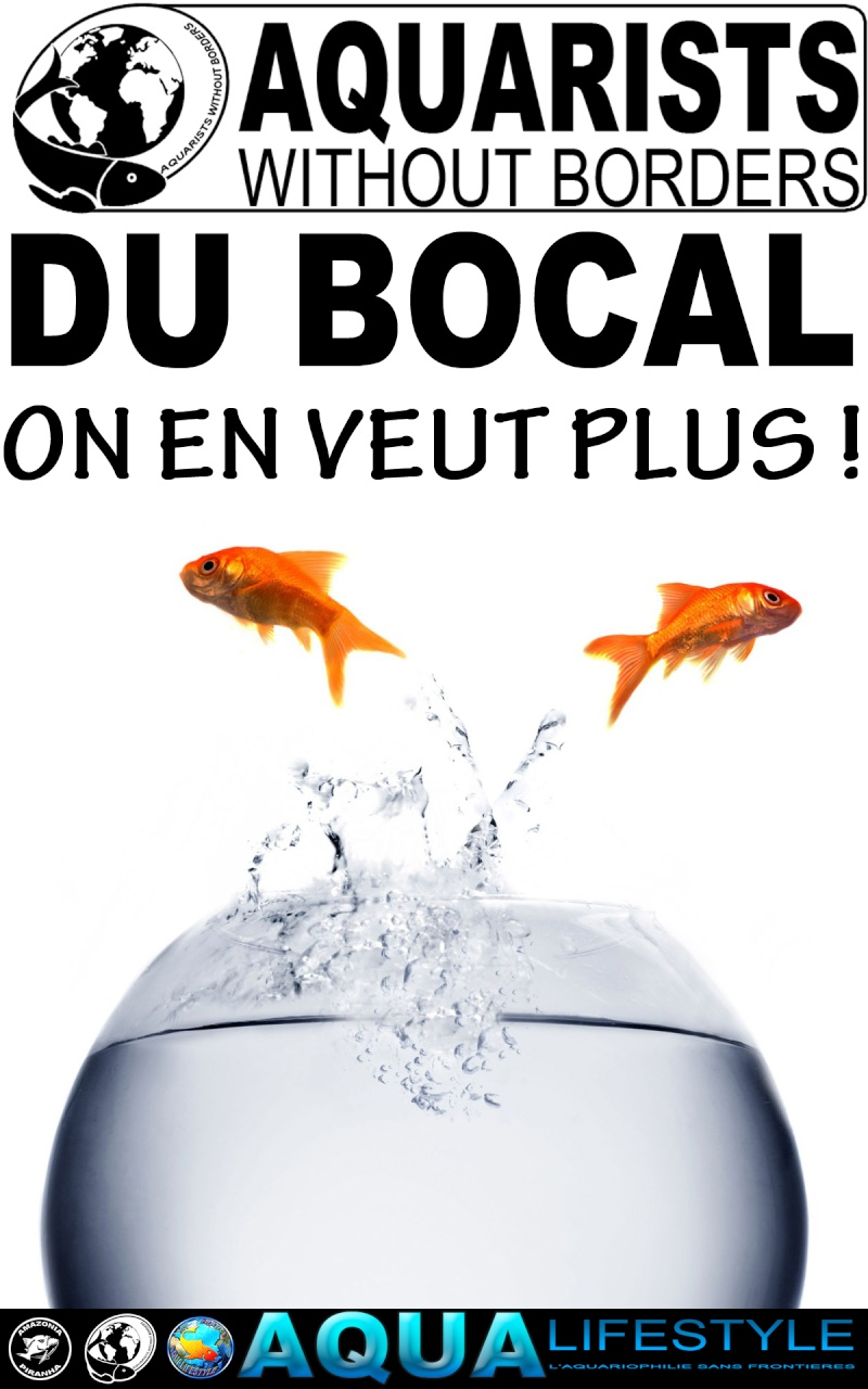 tyrano34 - Mes Objectifs d'aquariophile responsable Stop_b10