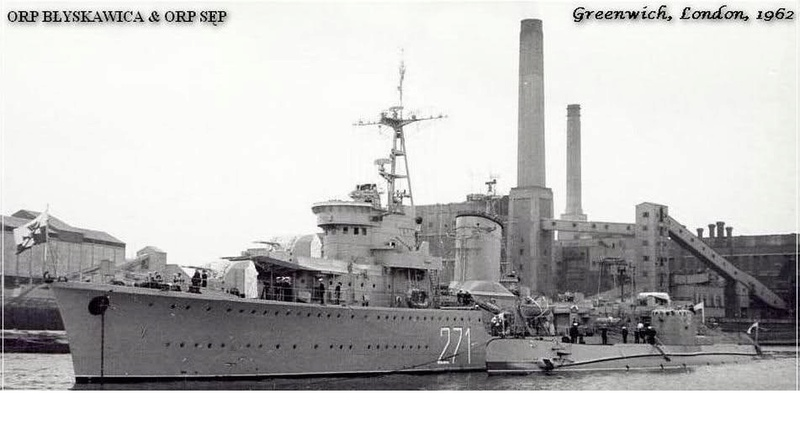 Marine polonaise  Blyska12