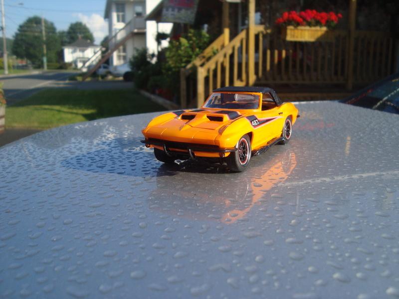 corvette Dsc08126