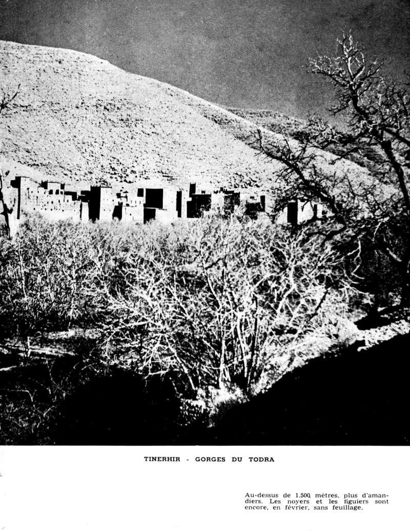 Au Sud de l'Atlas vers le Pays des Casbahs - Page 4 Sud_ca57