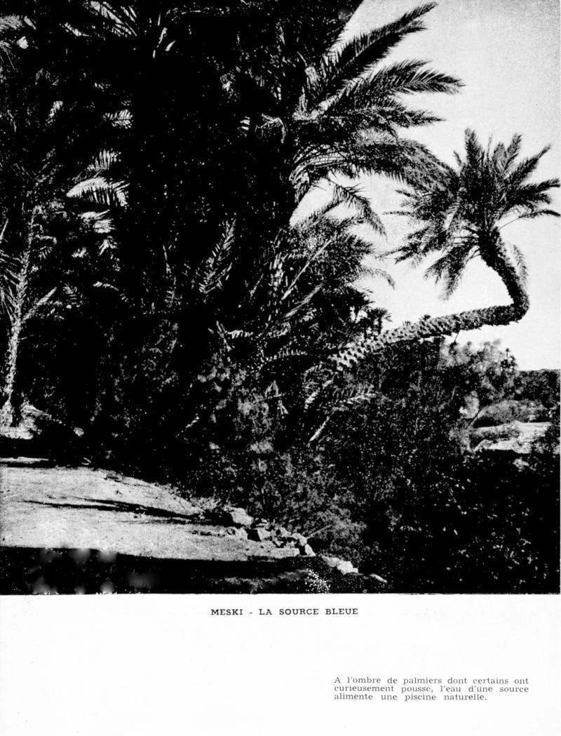 Au Sud de l'Atlas vers le Pays des Casbahs - Page 4 Sud_ca68