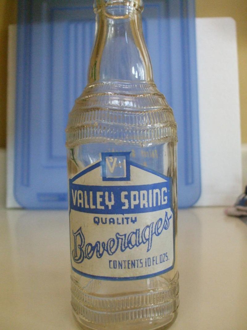 Valley spring Dscf1626