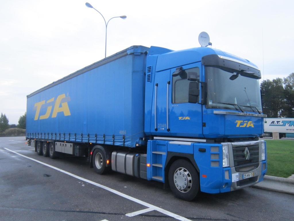 TJA  (Transportes J. Amaral) (Estarreja) Renau116