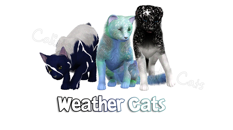 Weather Cats by Calista 0035_w11