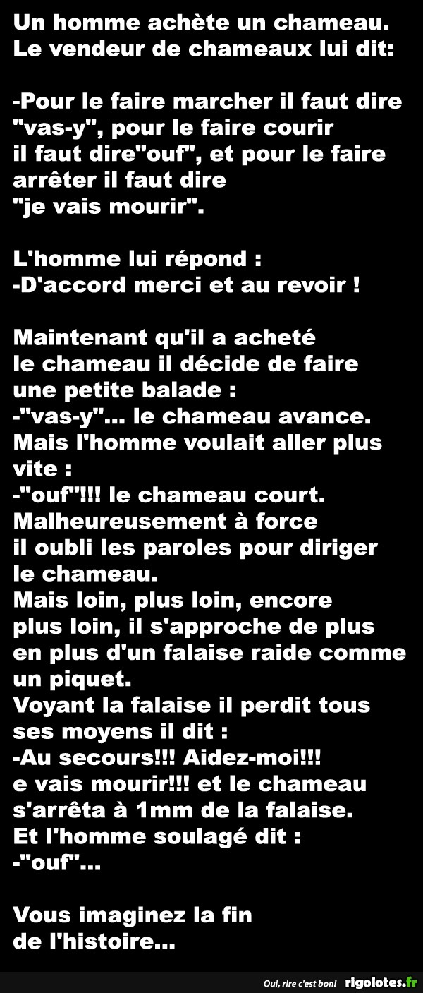 HUMOUR - blagues - Page 19 20473510