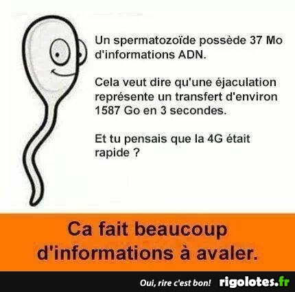 HUMOUR - blagues - Page 20 21181310