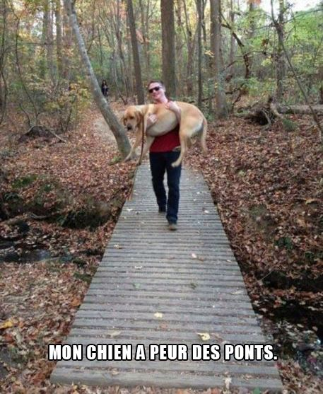 HUMOUR - blagues - Page 6 5b06ac10